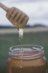 Se comprueba que la miel puede curar infecciones en la piel