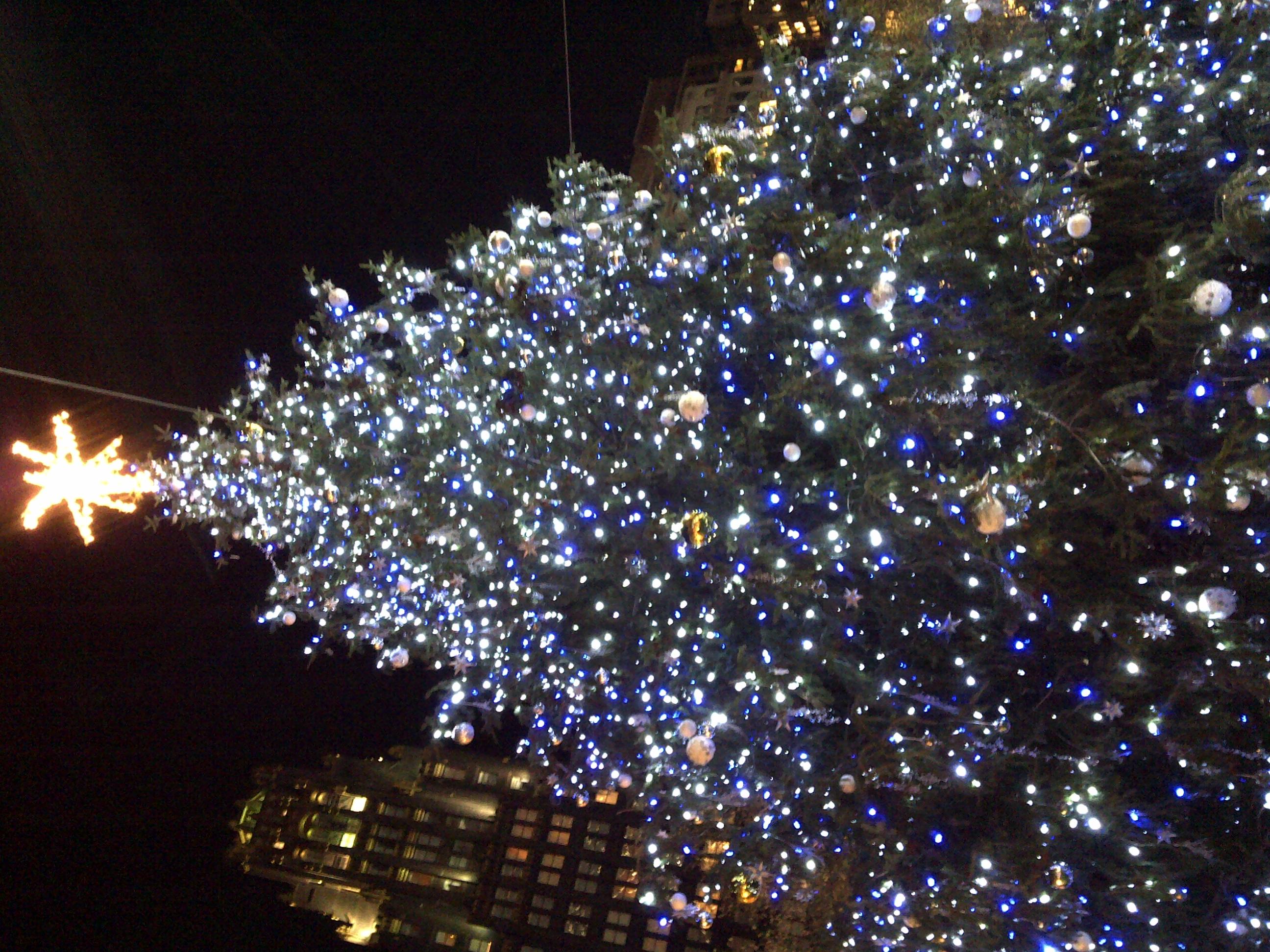 06 diciembre 2011 de oriente a occidente - Arbol de navidad con luces ...