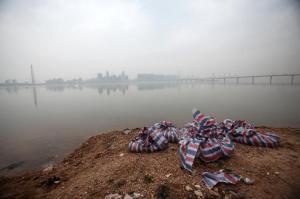 Cadáveres de cerdo en envoltorios para sacarlos de la orilla del río Gan, en Nanchang, el 18 de marzo de 2014. (Foto: AFP)