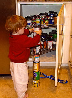 245px-autism-stacking-cans_2nd_edit